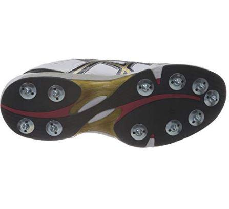 ASICS Men's Gel-Speed Menace Lo-L Cricket Shoes