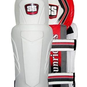 SS Dragon Wicket Keeping Legguard