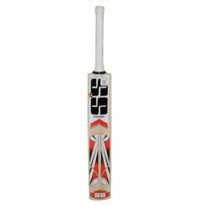 SS Master Kashmir Willow Cricket Bat