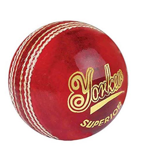 SS Yorker Leather Cricket Ball_Senior