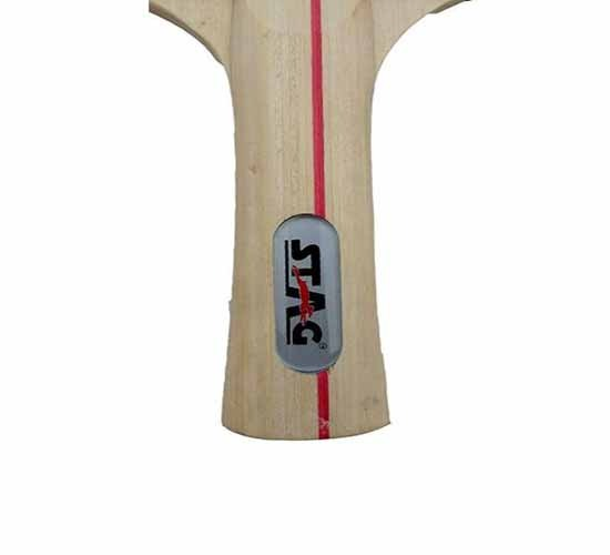 Stag 2 Star Table Tennis Racquet_HANDLE