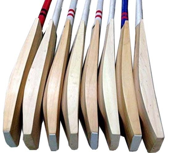 WC English Willow Cricket Bat Harrow Size