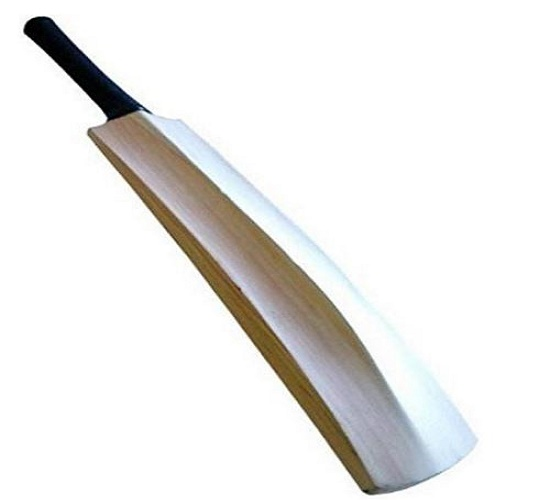 WillCraft Kashmir Willow Cricket Bat