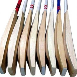 WillCraft Plain English Willow Cricket Bat