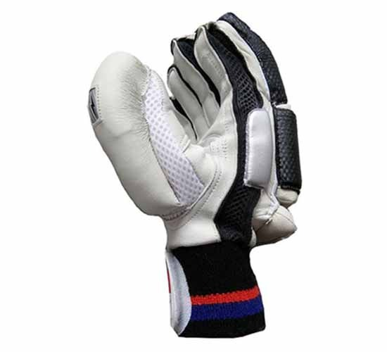 BDM-Sachin Special Batting Gloves White & Black