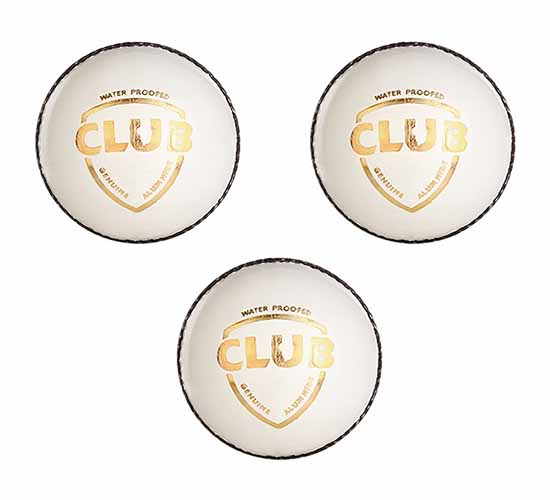 SG Club Leather Cricket Ball (white) 3