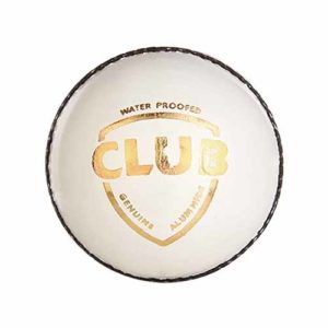 SG Club Leather Cricket Ball (white)