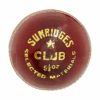 SS Club Cricket Ball2