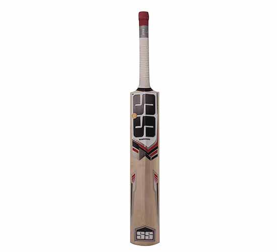 SS 281 kashmir willow cricket bat 1