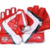 SS Match Wicket Keeping Gloves2