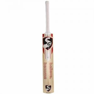 SG VS-319 Plus Kashmir Willow Cricket Bat