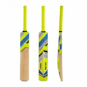 SG Maxx 100 Maxxport Cricket Bat
