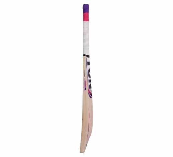 SS TON Blaster Kashmir Willow Cricket Bat1