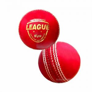 Setia International League Cricket Ball