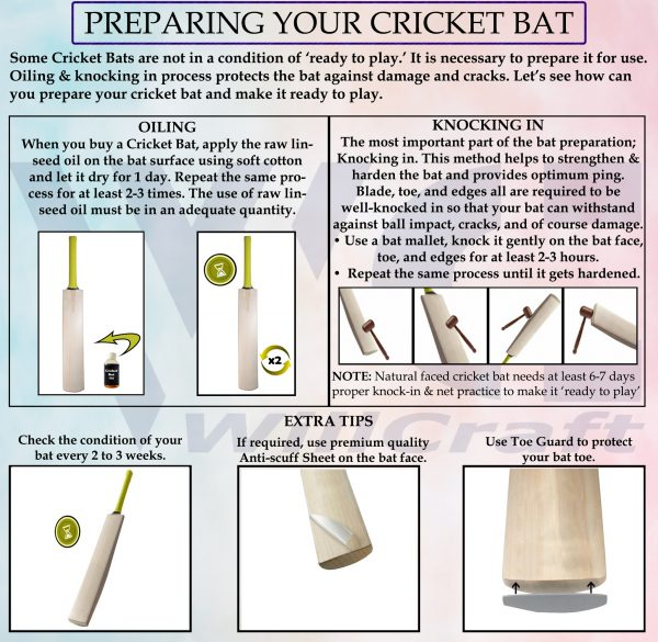 WillCraft Cricket Bat Care_Final