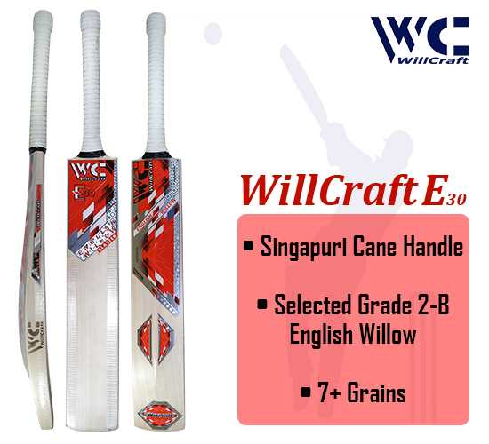 WillCraft E30 English Willow Cricket Bat_cover