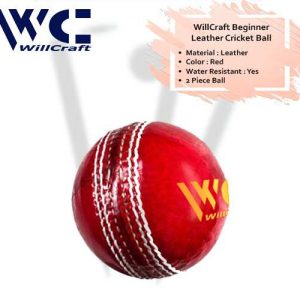 WillCraft Beginner Leather Cricket Ball_cover image