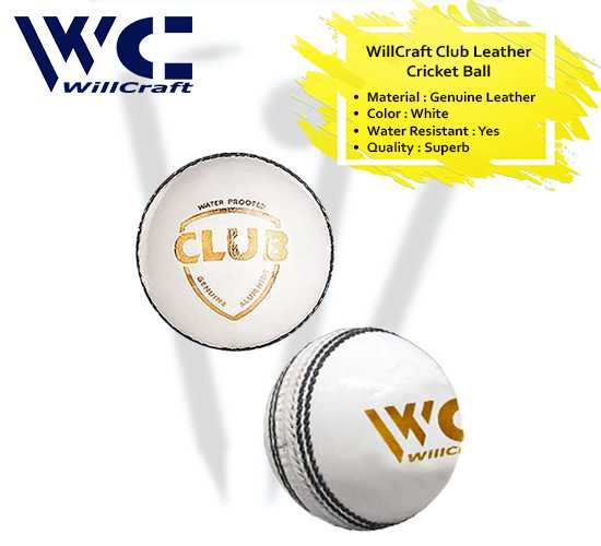 WillCraft Club ball_white_cover image