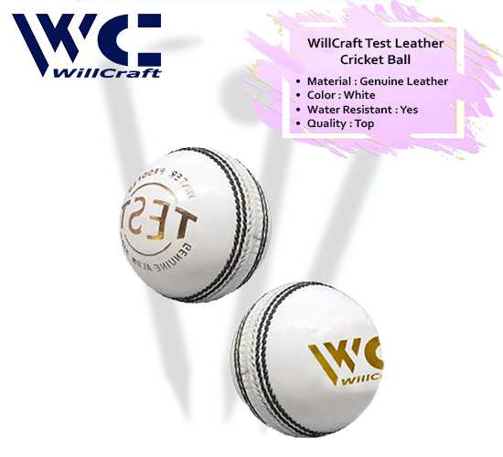 WillCraft Test Ball_white_cover image
