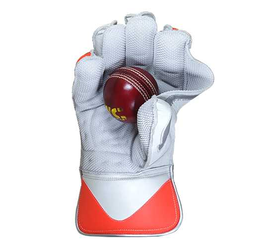 WillCraft WG6 Wicket Keeping Gloves