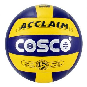 Cosco Acclaim Volleyball 1