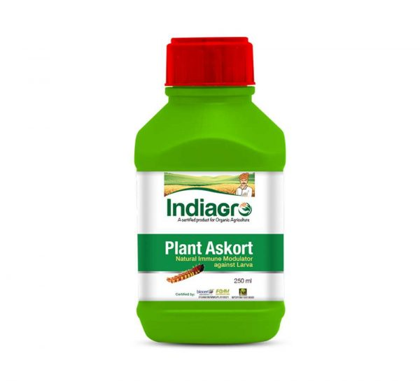 IndiaGro Plant Askort_cover