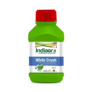 IndiaGro White Crush_cover