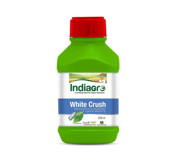 IndiaGro White Crush_cover