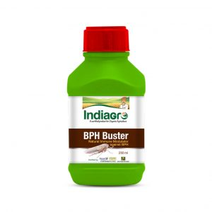 IndiaGro BPH Buster_cover