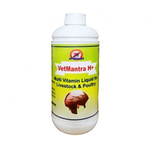 VetMantra H+ Multi Vitamin Liquid_1L