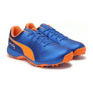 Puma 19 FH Rubber Cricket Shoes_cover
