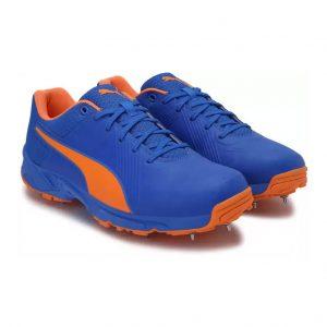Puma 19.2 FH Spike Cricket Shoes_cover